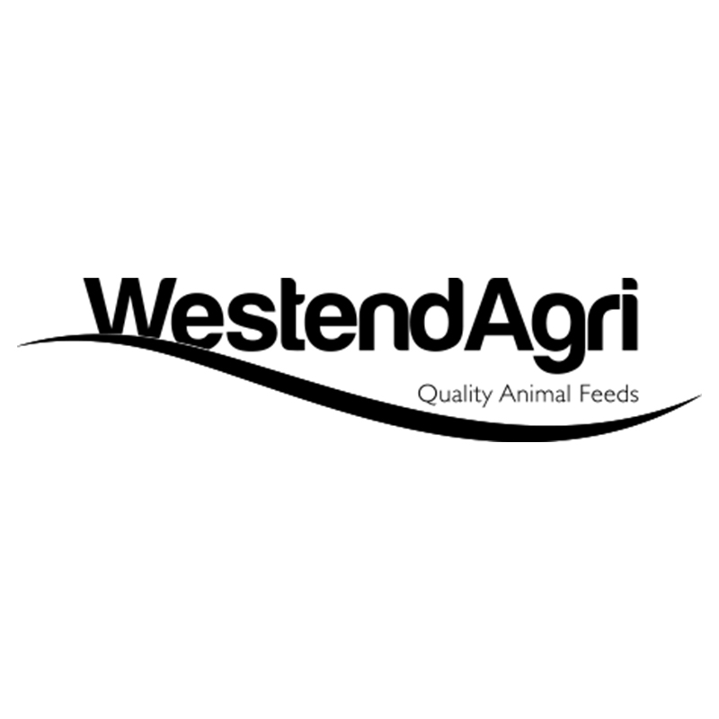 Check Out Some Of The Awesome Clients Working With Acrylic Digital, The Best Digital Marketing Firm In Cheshire - WestendAgri