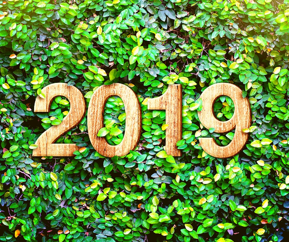 New Year, New Growth: How To Uplevel Your Business In 2019
